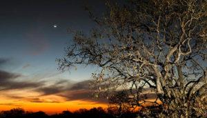 Thaba Khaya - Sunset