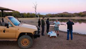Thaba Khaya Drinks At Fish Eagle Dam