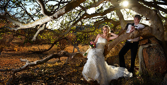 Weddings & Honeymoons at Thaba Khaya Lodge